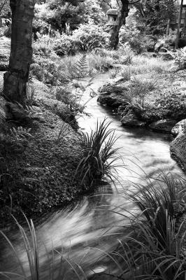 Flow – water