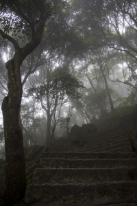 Huangshan – Mountain Path